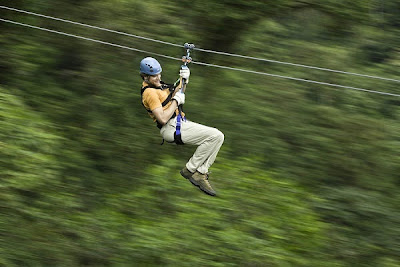 Rainforest Canopy Tours