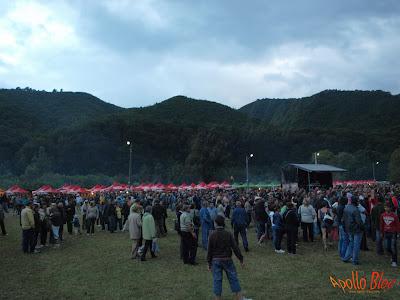Public la Festivalul Vaii Muresului