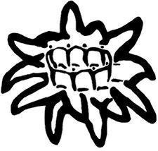 Escola flor de neu de Rubí