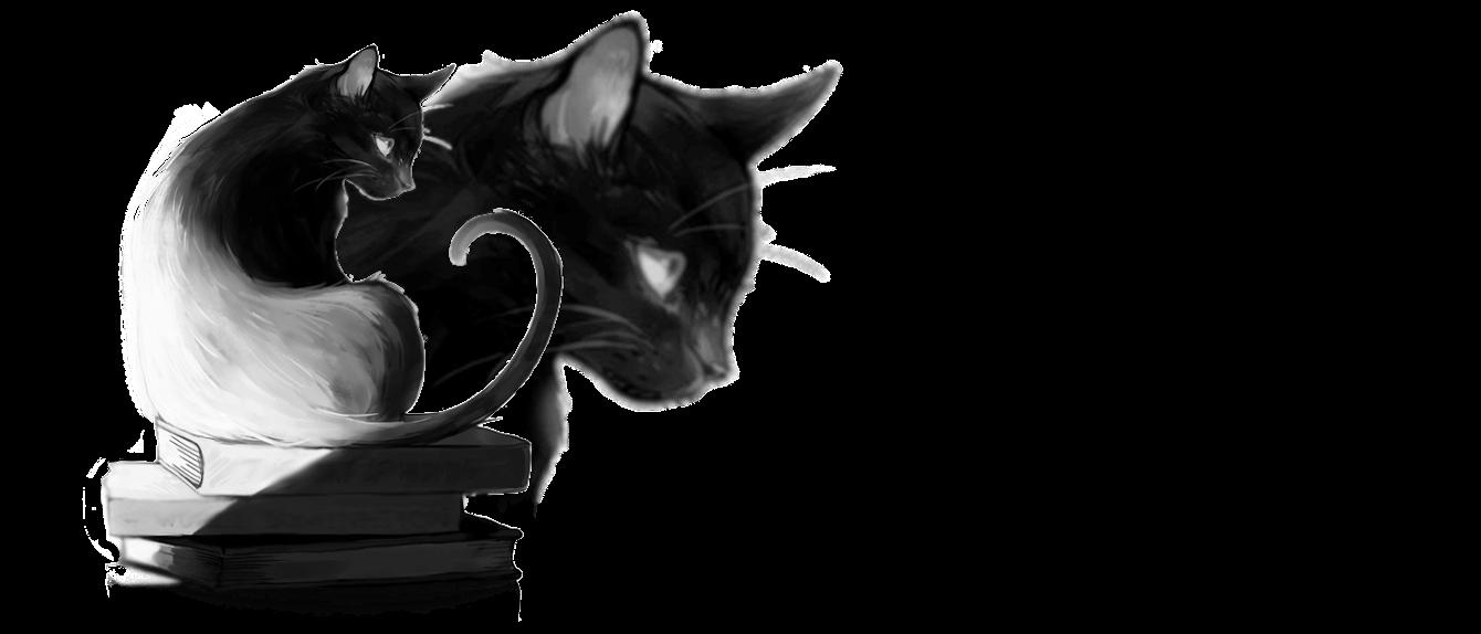 Kot Książkowy