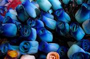 las cinco rosas