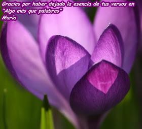 http://poemasrecopiladosdemaria.blogspot.com.es/