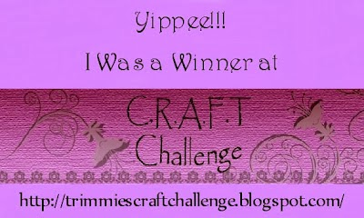 C.R.A.F.T. challenge
