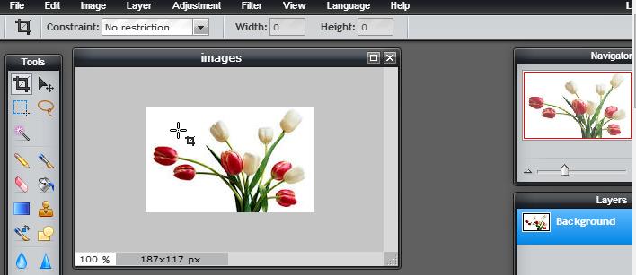 Free Online Photoshop