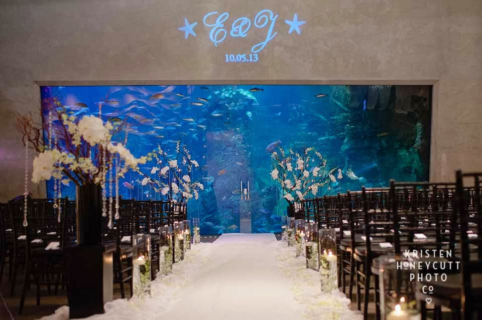 Stunning Real Wedding At The Seattle Aquarium Flora Nova