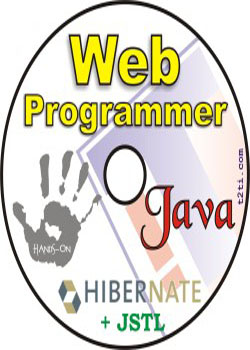 Web Programmer  JSTL/Hibernate download