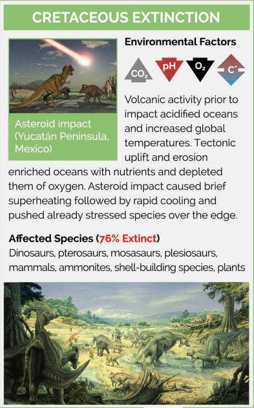 Cretaceous Extinction