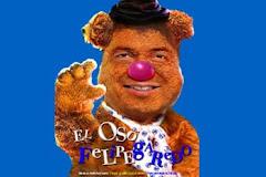 EL OSO FELIPEGAREDO