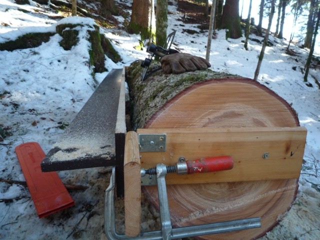 Holz sägen im wald