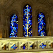 Tree of Life stained glass window from the Washington Cathedral