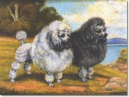 Poodles painting