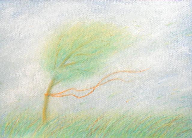 пастель ветер