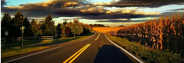 Impacto Ambiental de las Carreteras