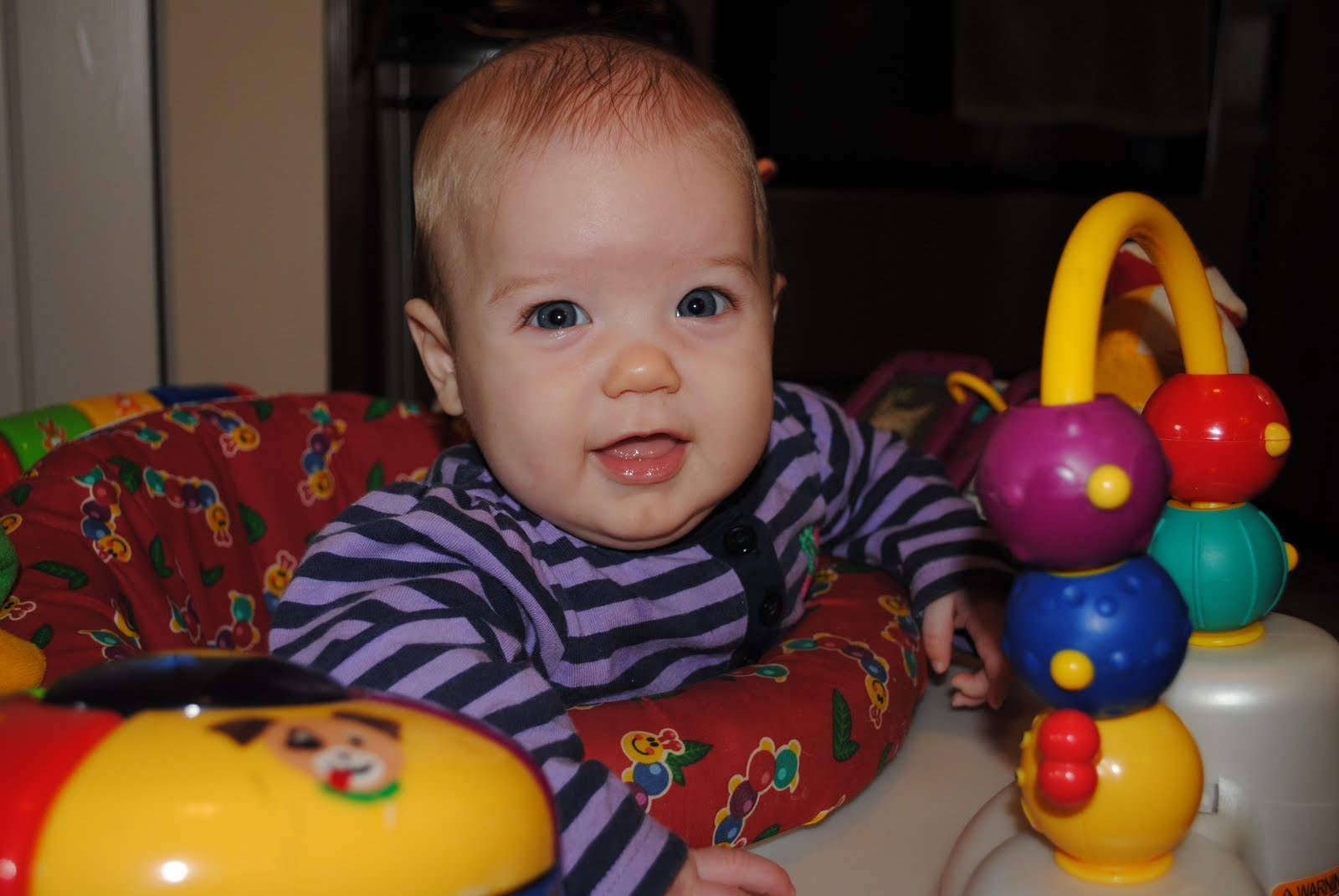 Purdys Blog  Lucy Grace   5 1 2 Months old