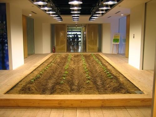 05-Urban-Farm-Building-Architects-Kono-Designs-Pasona-Group-www-designstack-co