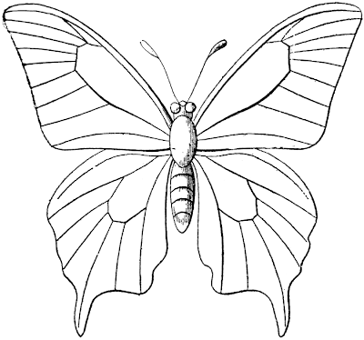 Butterfly Outline Clip Art