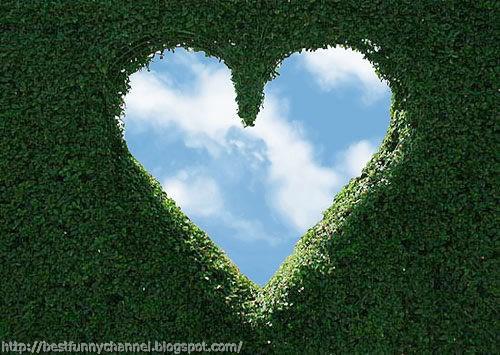 Heart among foliage.