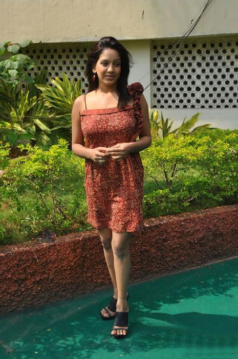 pavani reddy new , pavani actress pics
