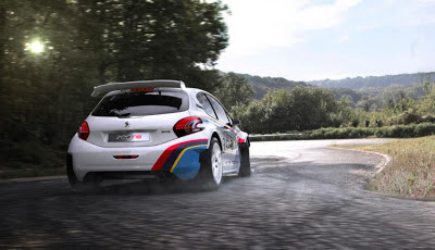 peugeot 208 t16 rally