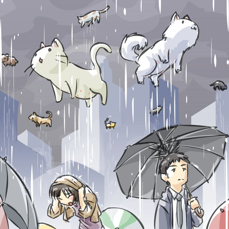 Image Of It S Raining Cats And Dogs