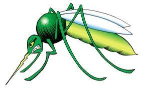 Informatii despre bolile infectioase