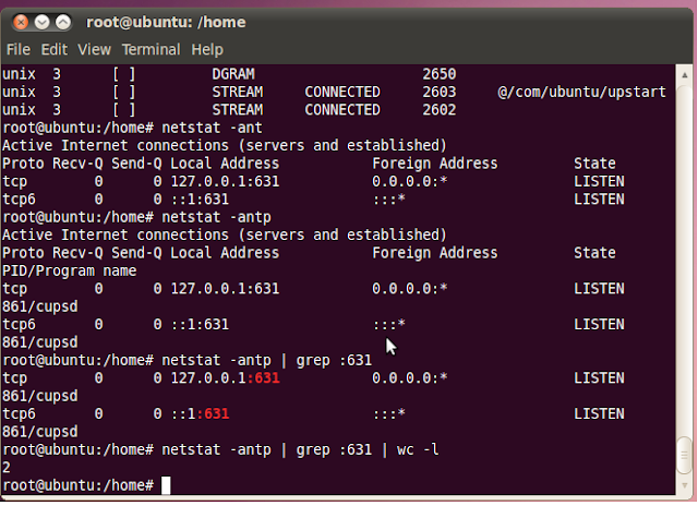 Linux command to check the number connections to mysql server