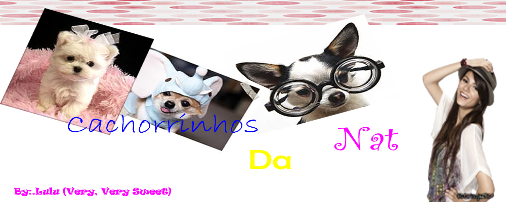 Cachorrinhos da Nat