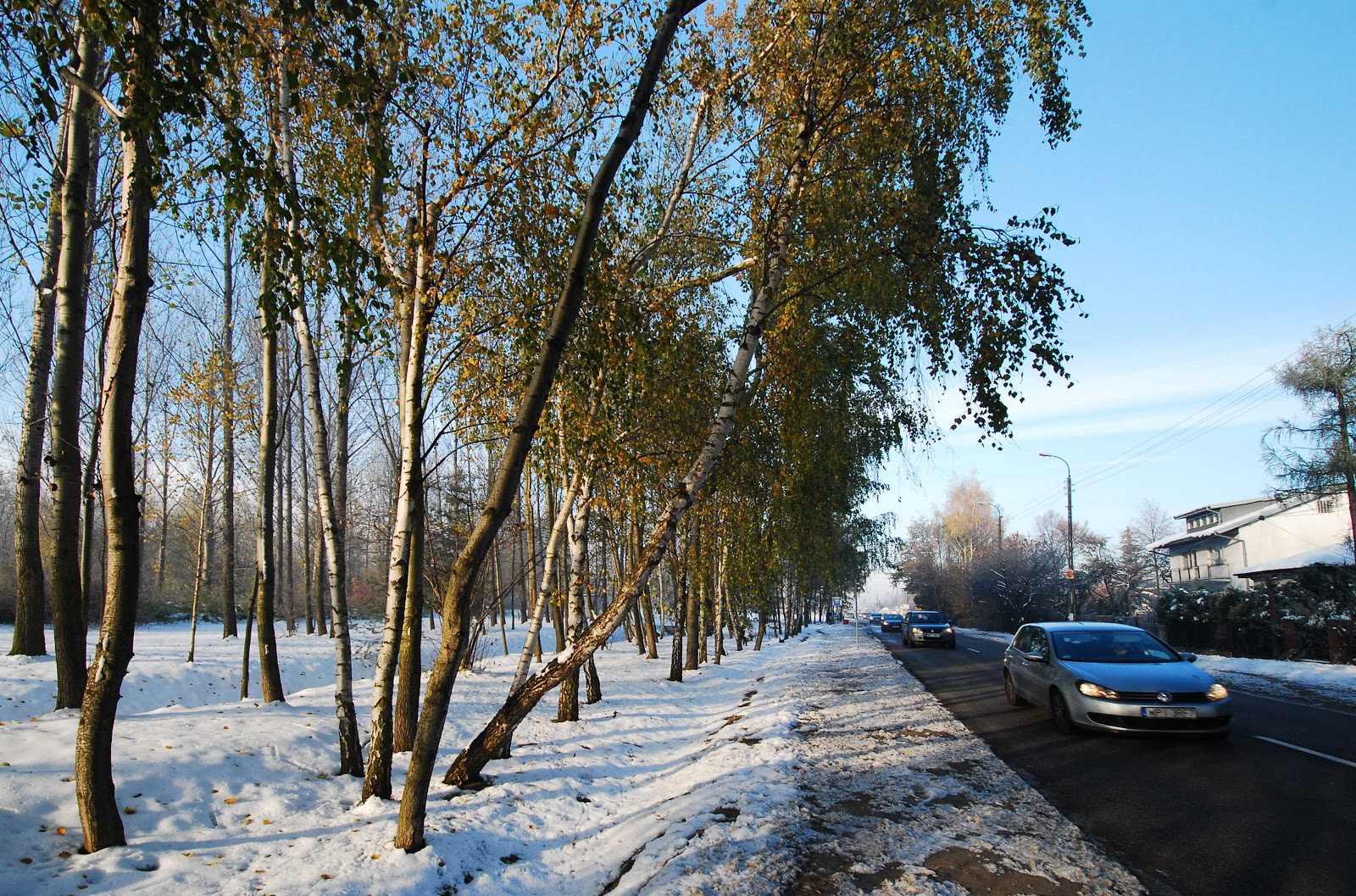 http://1.bp.blogspot.com/-w-0Q4F2qY0E/UJJGRkQvsSI/AAAAAAAAMtQ/OZHxW-qr8tE/s1600/First+snow,+Karczunkowska.jpg