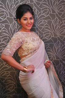 Anjali latest Glamorous pics in saree 020