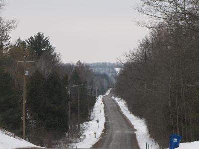 Ward Hills