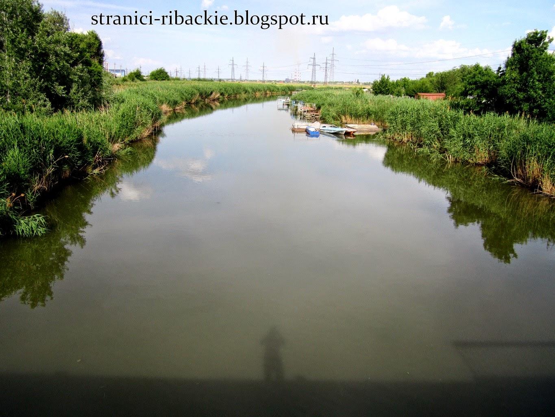 рыбалка на реке Аксай