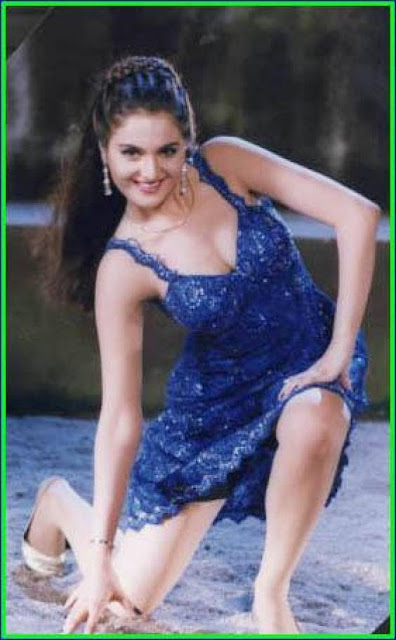 Hot Wallpapers, Monica Bedi Wallpapers, Monica Bedi Biography, monica bedi wallpapers, hd wallpapers of monica bedi,hot wallpapers of monica bedi,