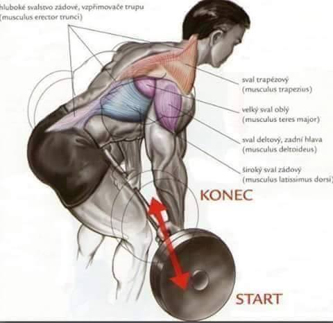 Bodybuilding weight training Exercises step by step instructions 5