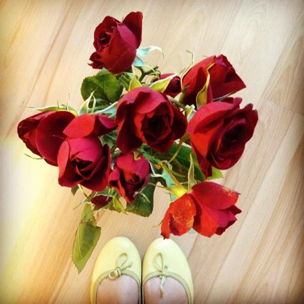 Saint Rita's roses