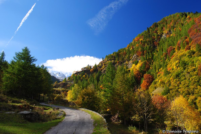 Autunno in Val Pellice