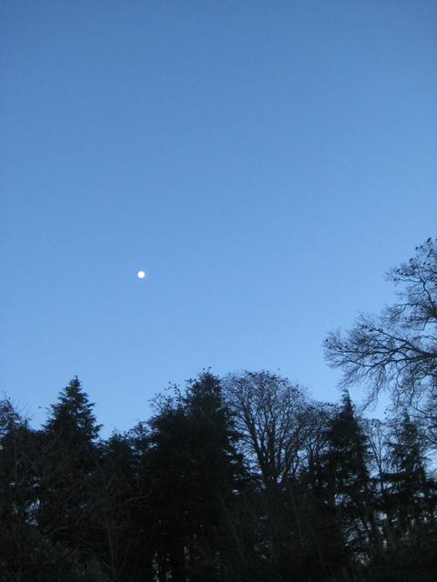 http://1.bp.blogspot.com/-w-wHTHfhauE/VLG_r_oIknI/AAAAAAAALDw/a1aivk57hrU/s1600/January-moon.jpg