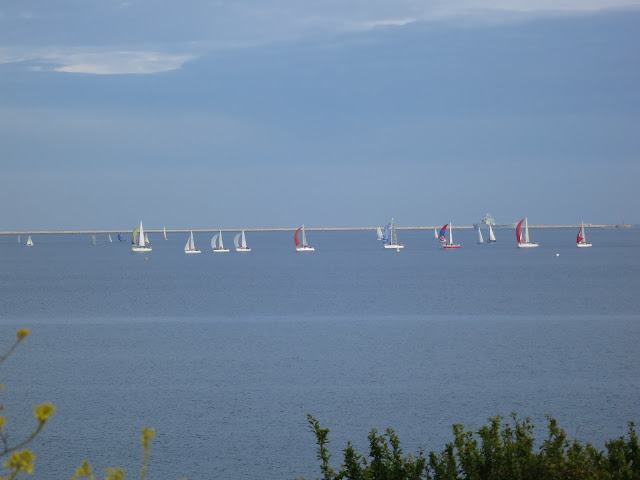 Small sailing boats with colourful sails in Portland Harbour, Dorset.