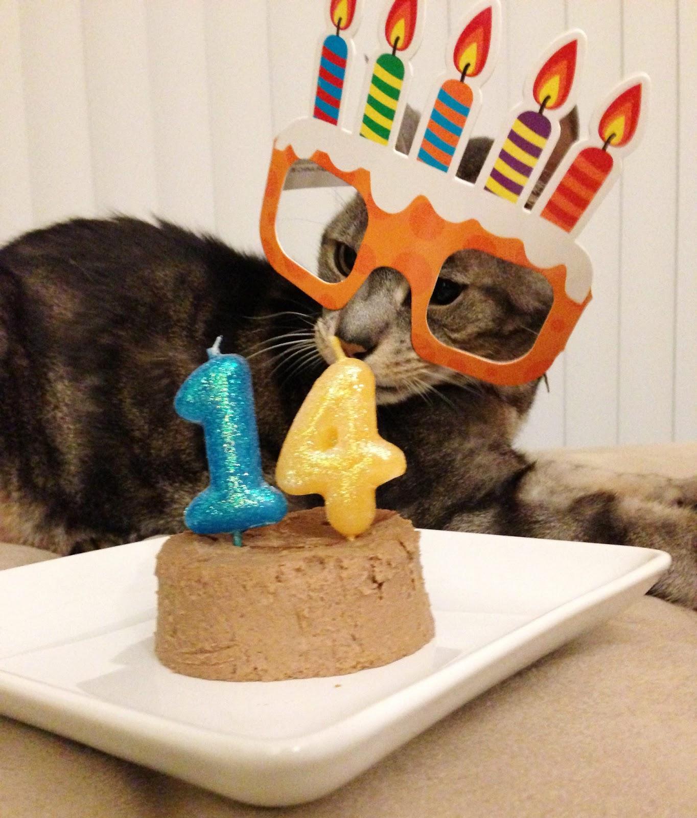 Happy 14th Birthday Image Gallery Happy 14th Birthday ...