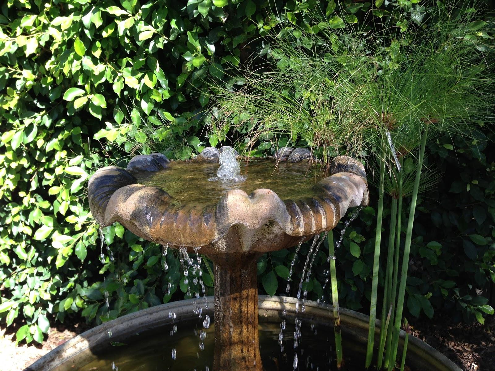 molly wood garden design fall