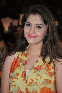 Surabhi Pictures in Floral Dress at 365 Days Audio Launch