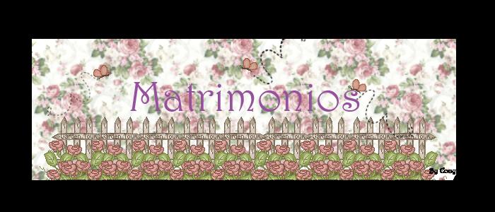 Invitaciones y Partes de Matrimonio