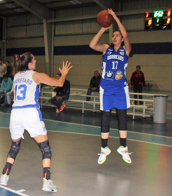 ABE Basketball
