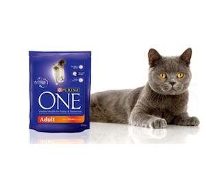Amostra Gratis Ração Purina ONE para gatos