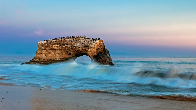 Natural Bridges State Beach, Santa Cruz, California (© Fotofeeling / Westend61 / plainpicture) 640