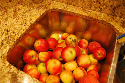 Future batch of homemade apple butter