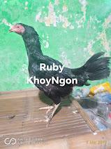 Indukan Si Ruby