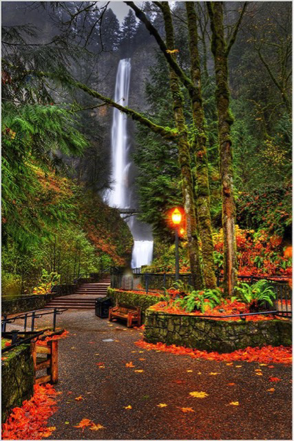 Oregon Waterfall
