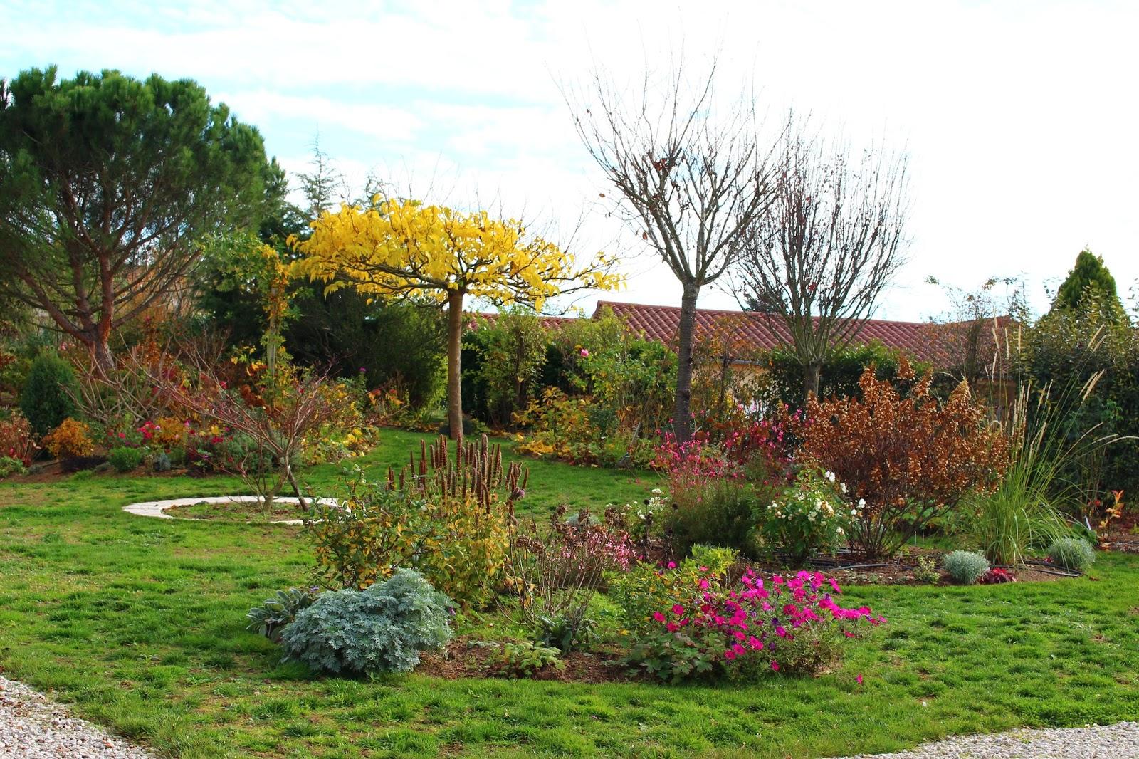 Roses du jardin ch neland attraits du jardin en novembre - Jardin novembre ...