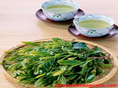Công dụng của nước lá chè xanh trong việc chăm sóc và điều trị mụn