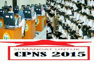 Pemerintah Membuka Lowongan 134 Ribu Formasi Untuk CPNS 2015
